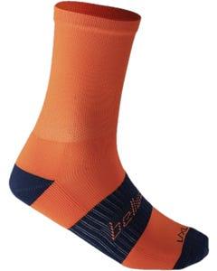 Socks Bellwether Tempo Orange