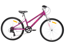Pedal Crush 24 Girls Mountain Bike Purple