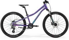 Merida21 Matts J24 Disc Dark Purple Pale Pink Teal