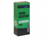 Freedom To Ride Schrader Valve Tube 700 x 35 Thornproof